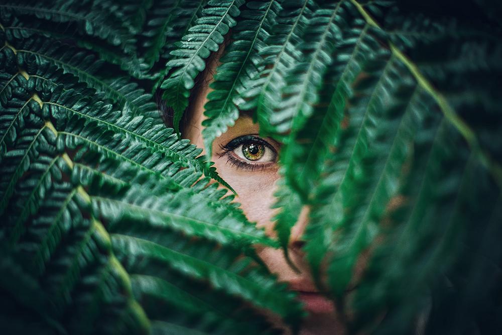 pollenallergi og hævede øjne
