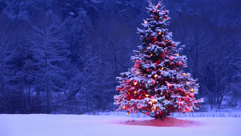 julegaveidéer til mænd