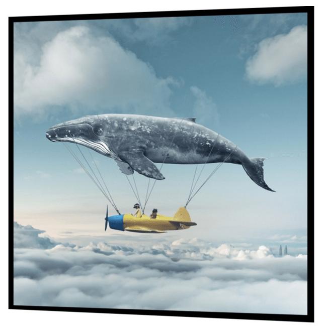 plakat med flyvende hval