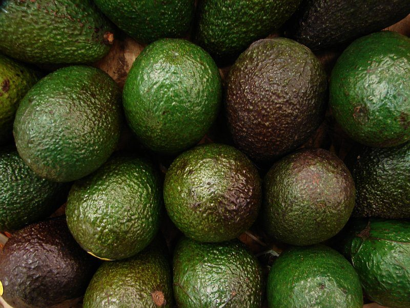 avocado fordele