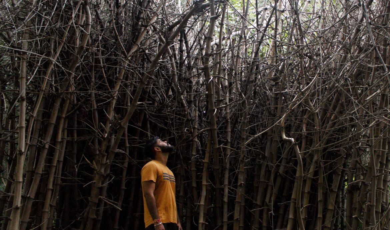 Bambustøj og Hvorfor Jeg Næsten Ikke Går i Andet!
